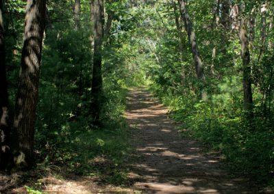 trail3f