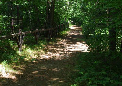 trail4e